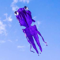 大眼金魚造型風箏(軟式風箏)(全配/附150米輪盤線)